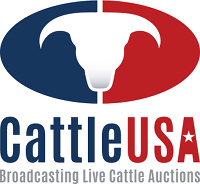 Cattle USA